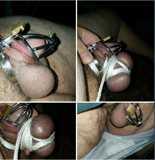 cbt cams, live cock and ball torture